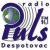 Radio Puls Despotovac